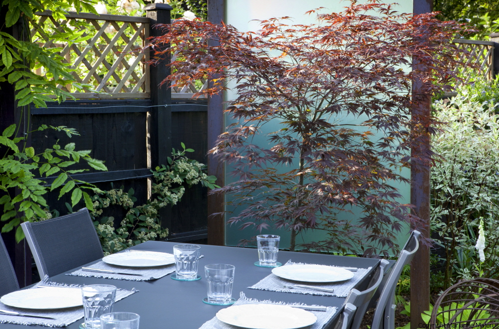 Urban Garden Design, Crouch End