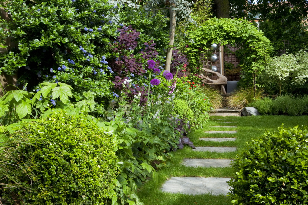 Town garden design muswell hill london n10 for Small english garden designs