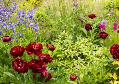 jilayne-rickards-garden-design-008-1200