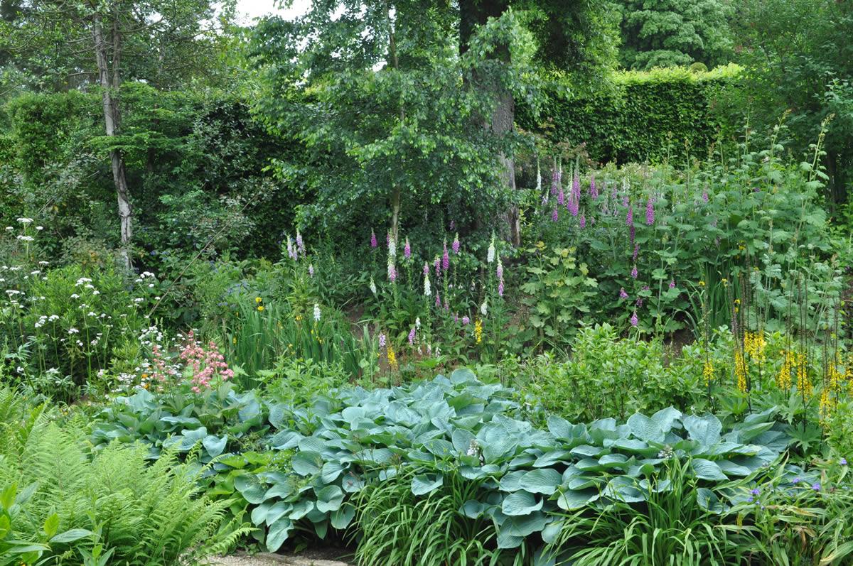 Jilayne Rickards Garden Design 2 1200