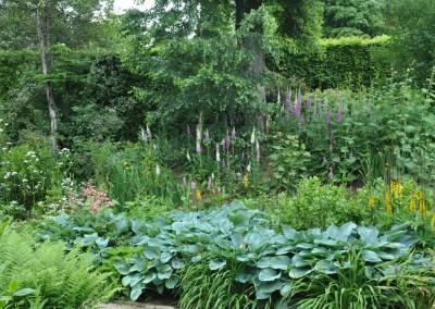 jilayne-rickards-garden-design-dsc_2724-1200
