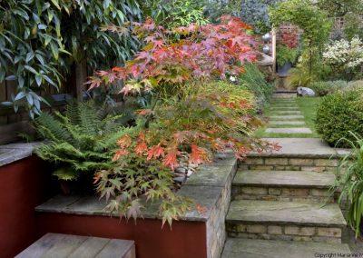 Town Garden Muswell Hill N10