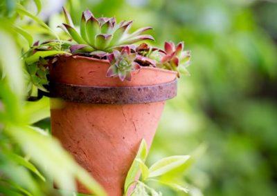 shady-town-garden-design-muswell-hill-jilayne-rickards-garden55dukes-2-1280