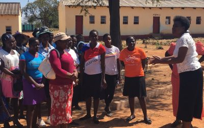 How the CAMFED Garden came about….