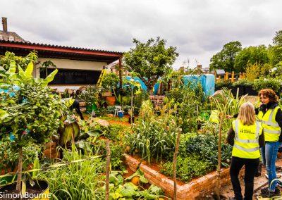 Jilayne 01, CAMFED Garden, Chelsea - Build Day 15,