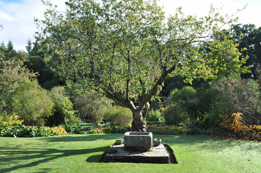 Garden Design and Landscape Designer in Harpenden ...