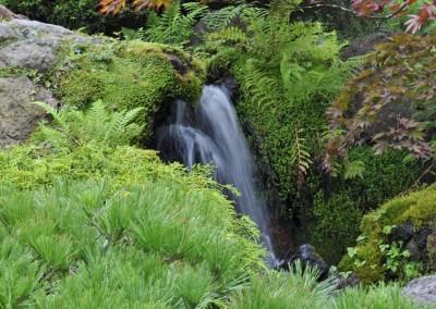 jilayne-rickards-garden-design-japanese-gardens-05,-san-francisco-2014-1200