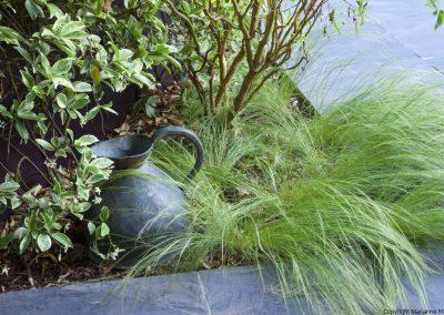 Stipa tenuissima, slate paving, jug