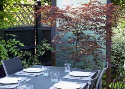 Table and chairs on patio, perspex screen in metal frames, Acer palmatum 'Burgundy Lace', Cornus alba 'Elegantissima'
