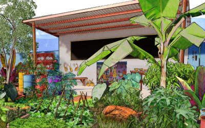 The CAMFED Garden at Chelsea Flower Show 2019