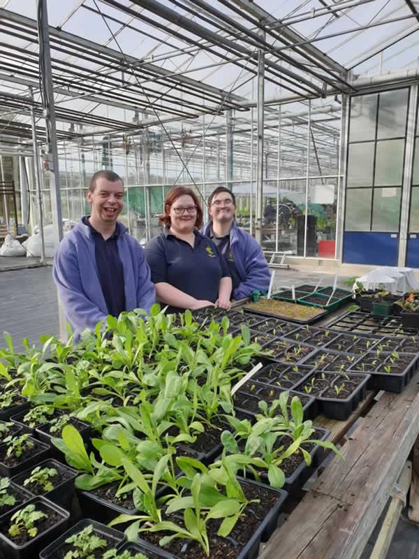 CAMFED Garden Design RHS Chelsea Jilayne Rickards