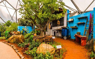 CAMFED Chelsea Garden moves to Eden