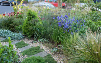 RHS The Garden